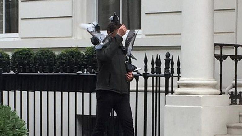 Kalimtarit i ngjiten pëllumbat derisa ecte rrugës (Foto)