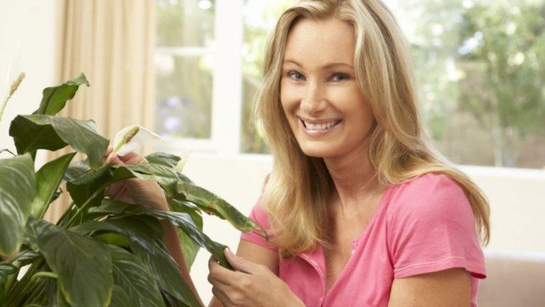 Për plotësimin e të gjitha dëshirave: Secila femër duhet t'i ketë këto tri lule në shtëpi! (Foto)