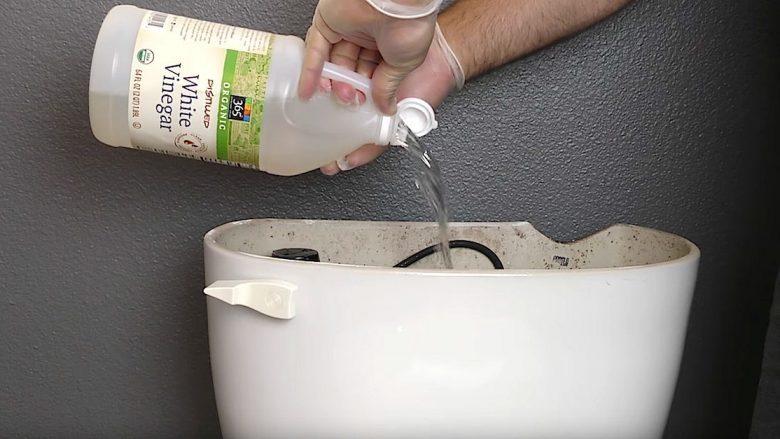 Vendosni uthull në tualet dhe shikoni çfarë ndodh kur ia lëshoni ujin