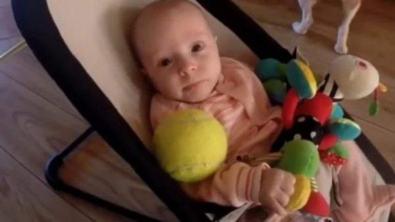 Qeni njëherë e hidhëroi beben dhe e bëri të qante: Pastaj në shenjë kërkimi faljeje bëri diçka të papritur! (VIDEO)
