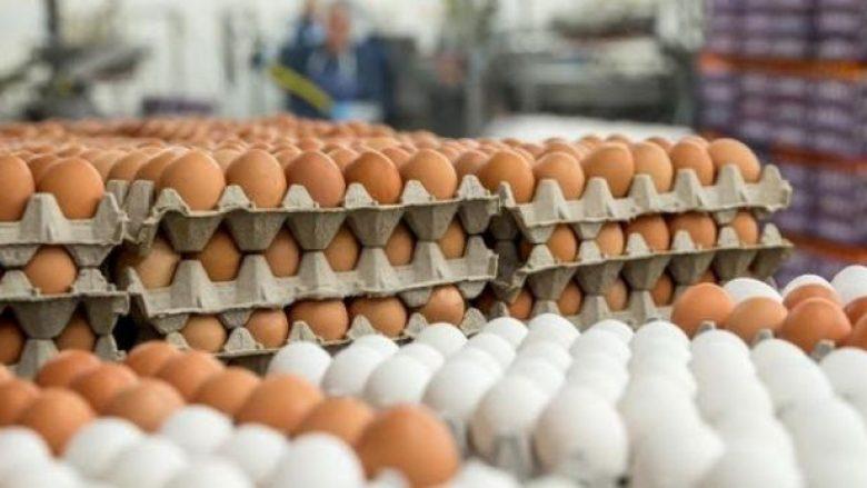 Kosova e parrezikuar nga vezët e helmuara (Video)