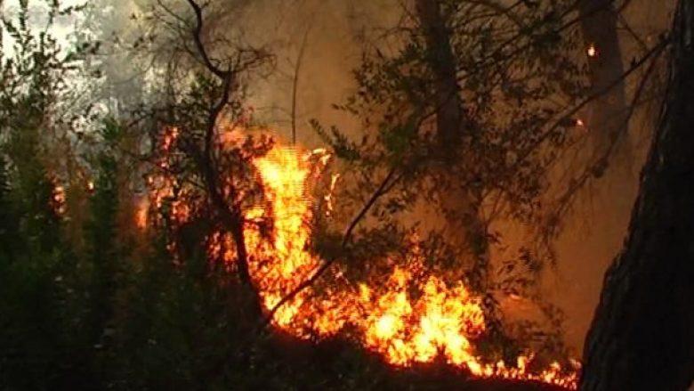 Zjarrfikës dhe vullnetarë tërë natën kundër zjarrit, shtëpitë jashtë rrezikut
