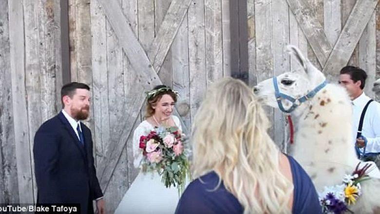 Nusja e emocionuar me befasinë që ia bëri shoqëruesja (Video)