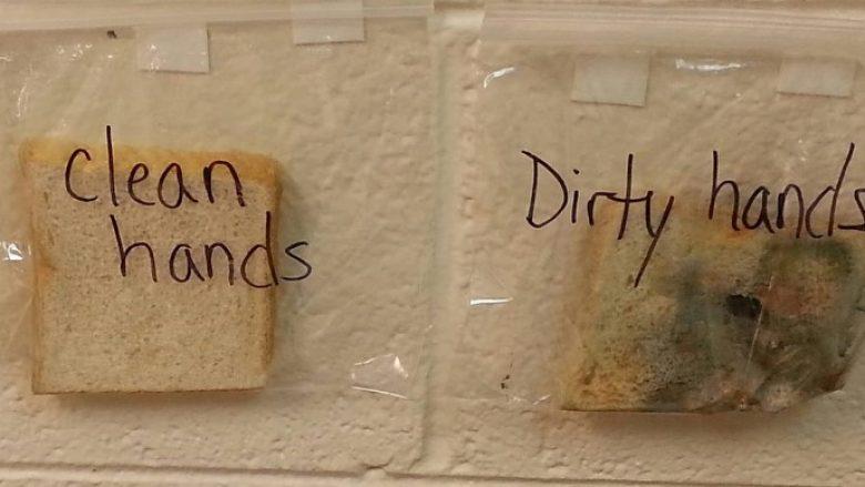 Eksperiment: Çfarë ndodhë nëse e prekni bukën pa i pastruar duart (Foto)