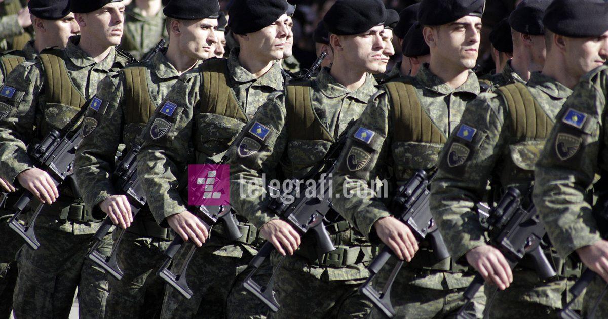 Ramadani: Transformimi i FSK-së në ushtri zgjat 10 vjet