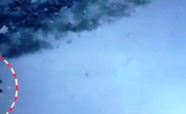 Qentë endacakë mbysin foshnjën 14-muajshe para shtëpisë (Video)