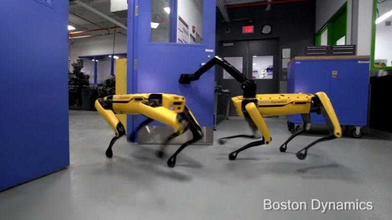 Qeni-robot që nuk pritet të jetë miku më i mirë i njeriut (Video)