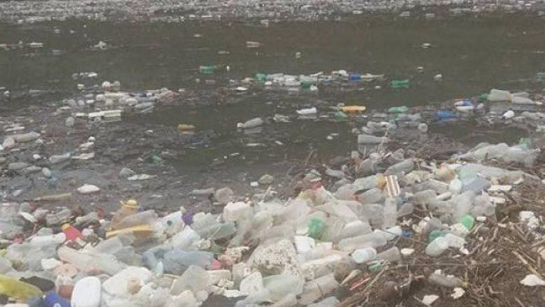 Liqeni i Vërmicës mbulohet nga mbeturinat