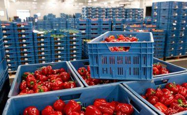 Kosova importoi 3.2 miliardë euro mallra, eksportoi 475 milionë euro gjatë vitit 2020