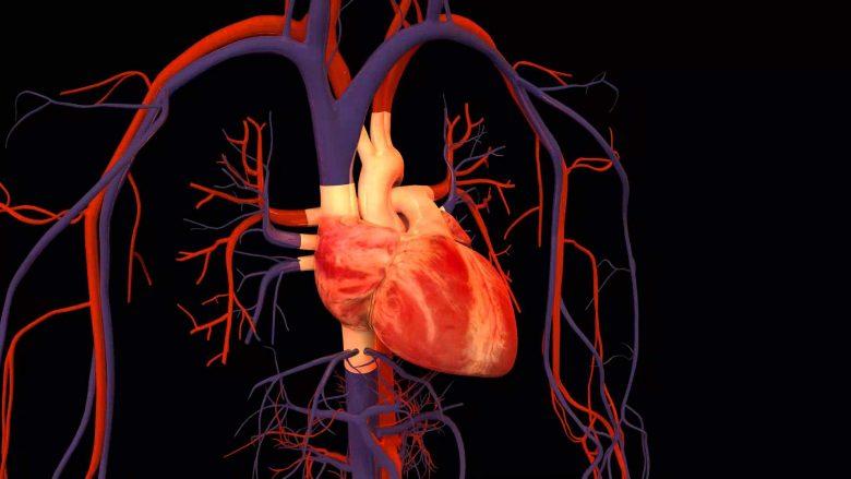 """Në laborator për herë të parë është punuar """"zemra"""" e cila rrah"""