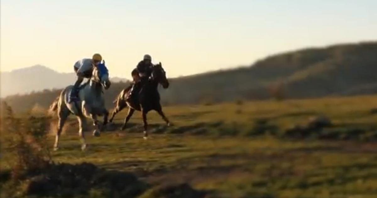"""""""Aty ku dy shpirtra luftojnë për një trofe"""": Të shtunën mbahet gara e kuajve në """"Mejdan"""" të Opojës (Video)"""