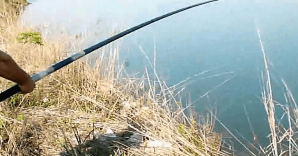 Lezhë, 32-vjeçarin e mbyt rryma duke peshkuar