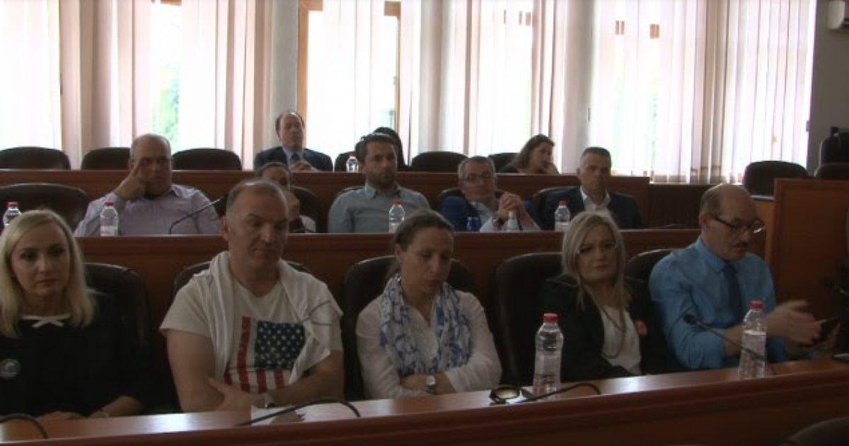 Përfaqësues të diasporës shqiptare vizituan Mitrovicën