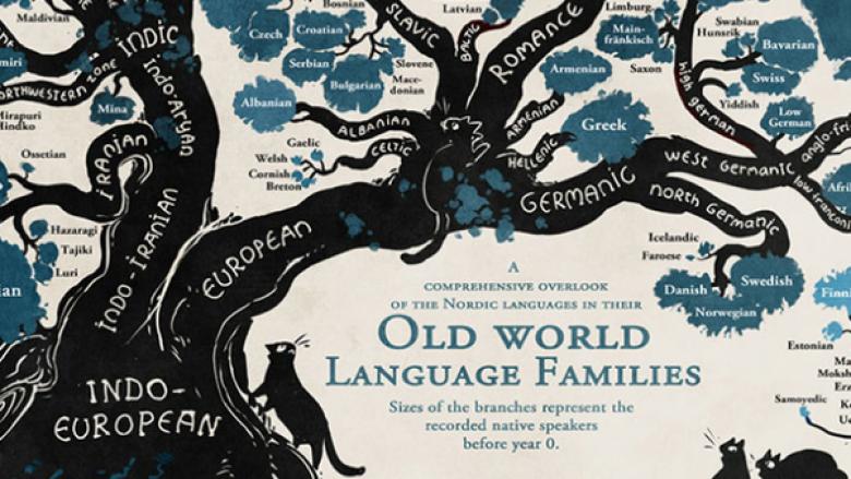 Toponimet ilire do të tregojnë zhvillimin e gjuhës shqipe nga antikiteti deri më sot