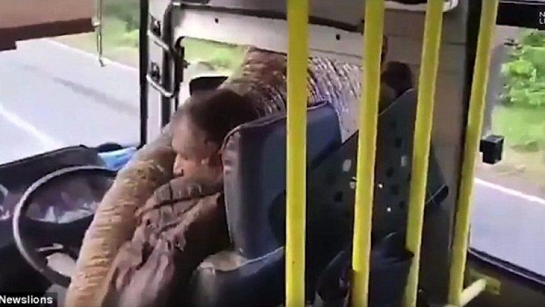 Elefanti ia bllokon rrugën shoferit të autobusit, fut hundën në dritare dhe ia vjedh bananet që i kishte brenda (Video)