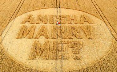 Propozimi romantik në fushën e grurit (Foto/Video)