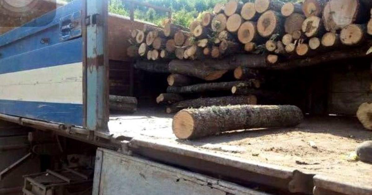 Kujdes nga shitësit mashtrues të druve, mund t'i paguani 10 metra e të merrni veç 5 metra kub