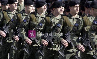 """Qytetarët """"të bashkuar"""" rreth ushtrisë (Video)"""