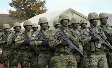 A do ta ketë Ushtrinë Kosova pa ndryshime kushtetuese?