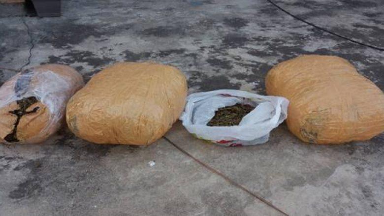 Policia jep detaje për konfiskim të marihuanës në Prizren dhe arrestimin e një të dyshuari