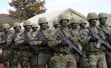 Ambasadori amerikan: Evoluimi i FSK-së në Forca të Armatosura hap pozitiv për Kosovën