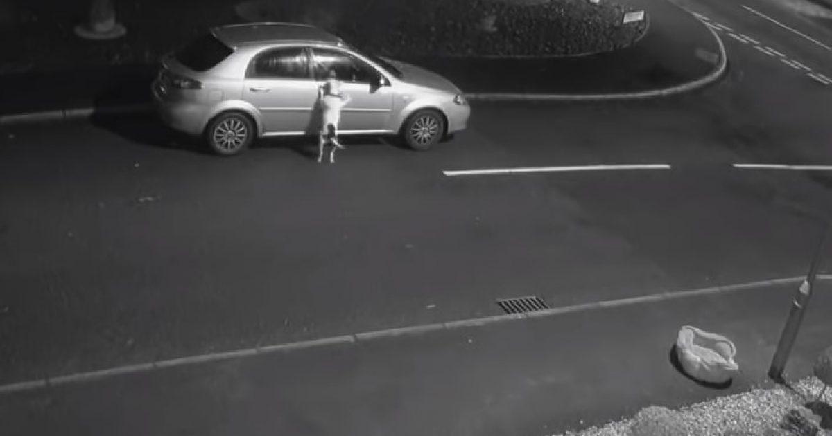 Pronari e braktisi duke e lënë në rrugë, reagimi i qenit ka prekur të gjithë (Video)