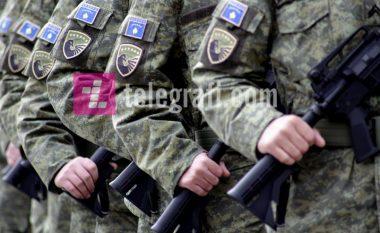 Krijimi i Forcës së Kosovës nuk paraqet kërcënim siç kanë propaganduar Serbia dhe Rusia (Video)