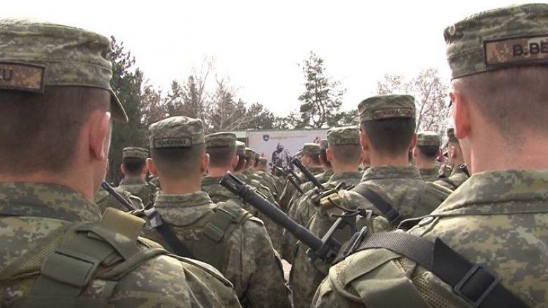 Ekonomistët thonë se buxheti i Kosovës është i mjaftueshëm për ushtrinë (Video)