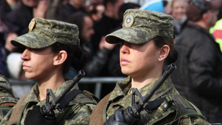 Shefi i UNMIK-ut: Edhe pas transformimit të FSK-së, KFOR-i ruan sigurinë në Kosovë