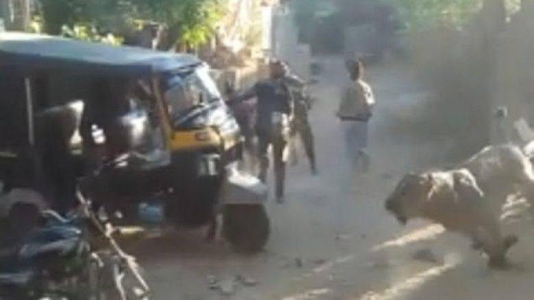 Luani bredh rrugëve të fshatit në Indi, banorët vrapojnë në të katër anët për t'i shpëtuar dhëmbëve të mprehtë (Video)