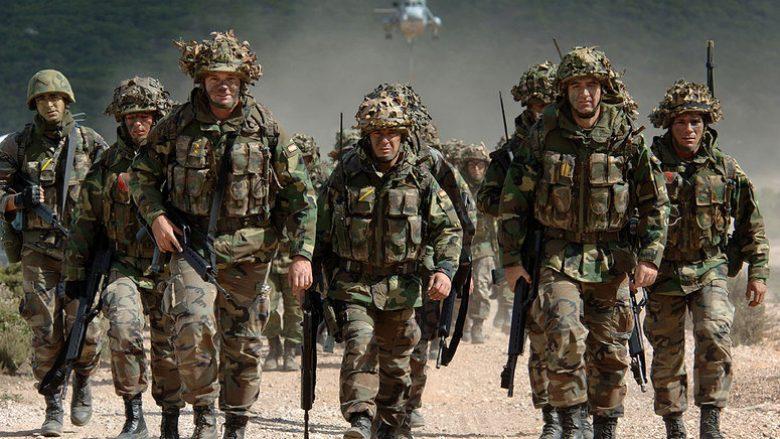 Bota ka ende nevojë për NATO-n