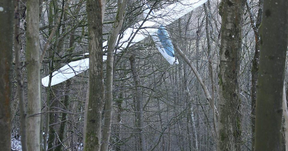 Intervenimi për shpëtimin e pilotit të ngatërruar me aeroplanin e lehtë në degët e pemëve (Video)