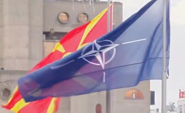 Çekia do ta ratifikojë protokollin për anëtarësimin e vendit në NATO këtë verë