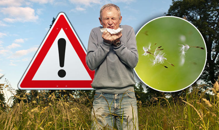 Alergjia nga bari, simptomat dhe mënyrat për ta luftuar
