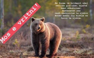 IKSHP apelon të mos vritet ariu i Prizrenit