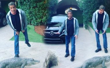 """""""Rambo"""" adhurues i kafshëve, argëtohet në shtëpi me krokodilin"""