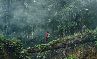 Dita Botërore e Shëndetit Mendor: Natyra ua përmirëson njerëzve shëndetin mendor