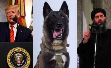 Trump poston fotografinë e qenit të përfshirë në vrasjen e al-Baghdadit, tregohet se çfarë roli luajti ai gjatë operacionit
