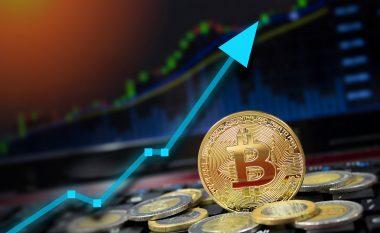 Pse vlera e Bitcoinit është rritur 700 për qind që nga fillimi i pandemisë COVID-19?