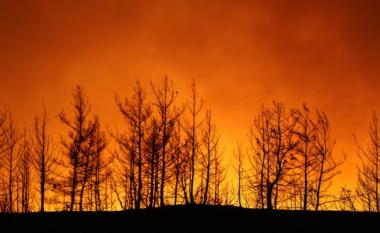 Shkon në tetë numri i të vdekurve nga zjarret në Turqi